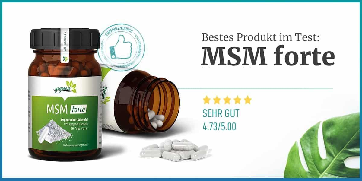 Empfehlung MSM