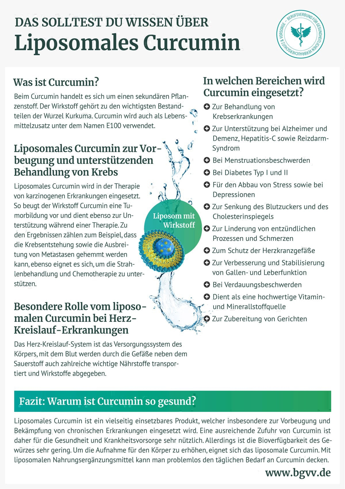BGVV infografik Liposomales Curcumin
