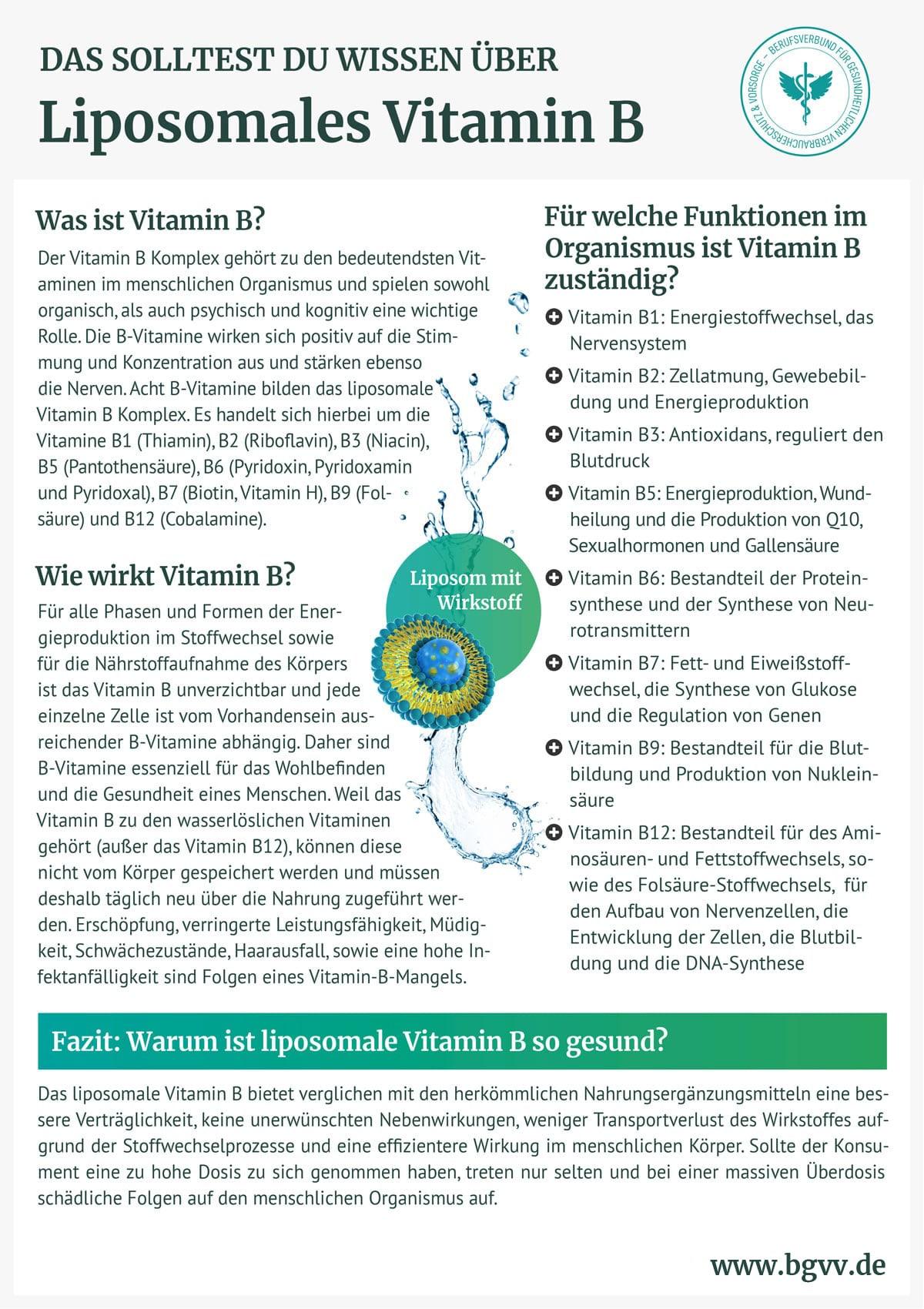 BGVV infografik Liposomales Vitamin B