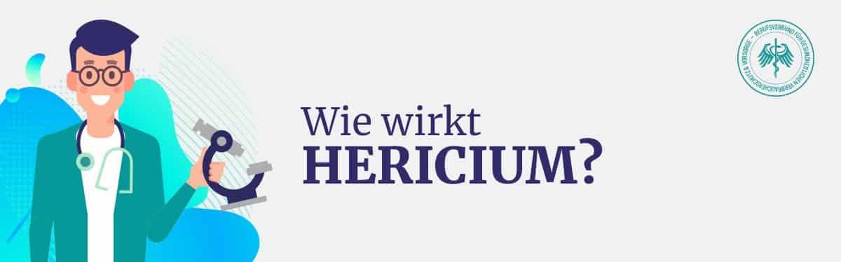 Wie wirkt Hericium