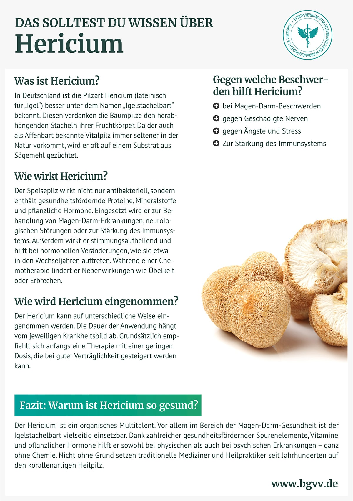 Infografik Hericium bgvv