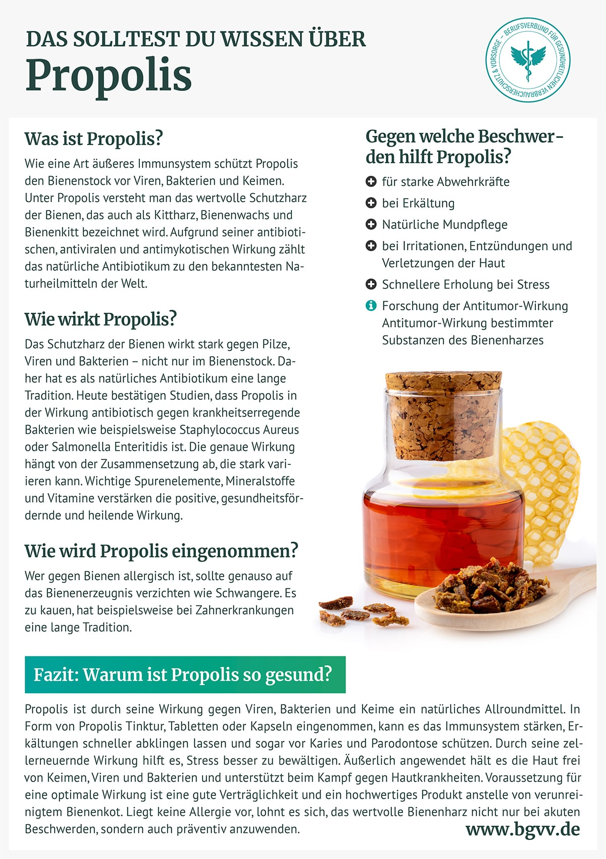Infografik Propolis bgvv