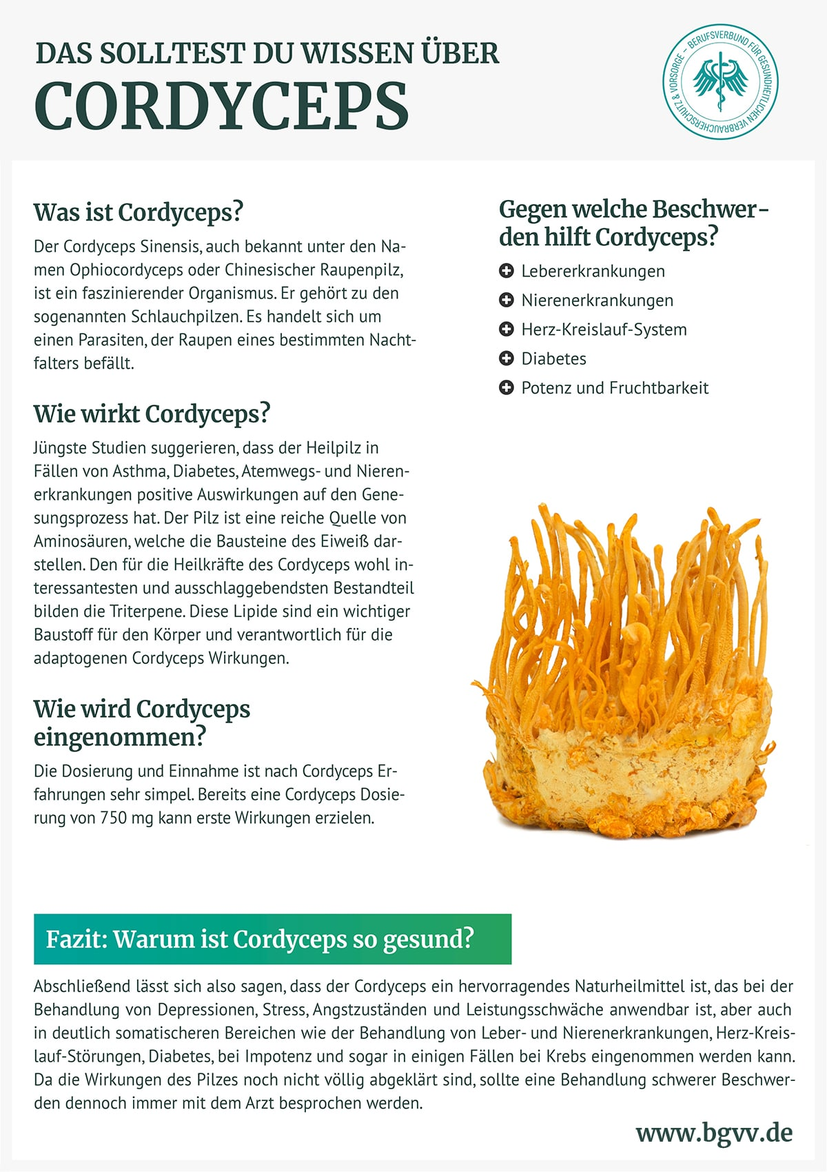 Infografik Cordyceps bgvv