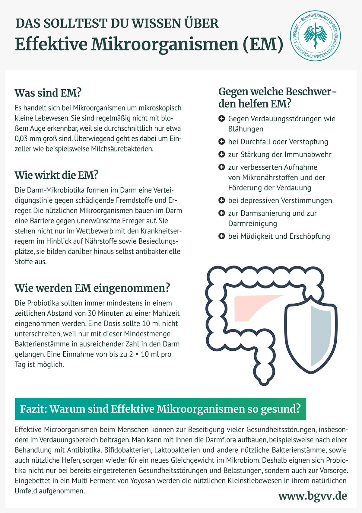 Infografik Effektive Mikrooganismen BGVV