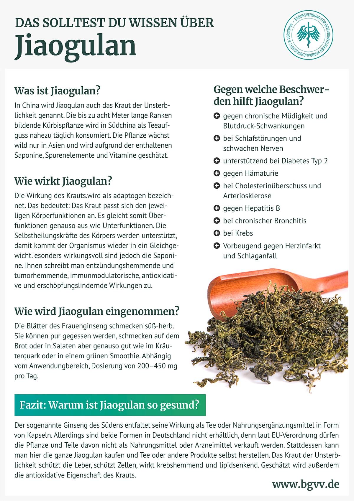 Infografik Jiaogulan BGVV