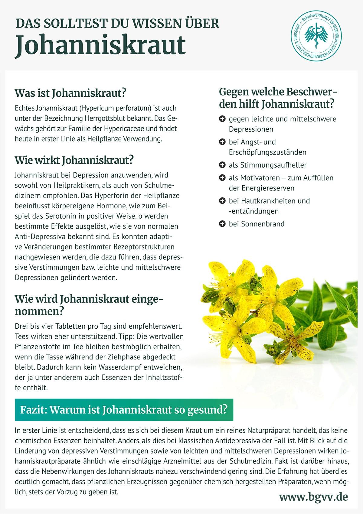 Infografik Johanniskraut bgvv