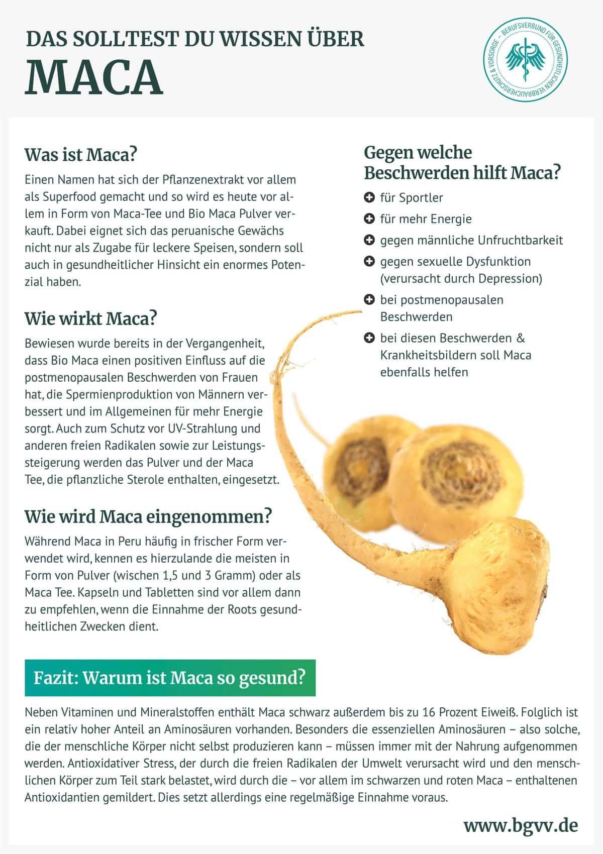 BGVV Maca Infografik