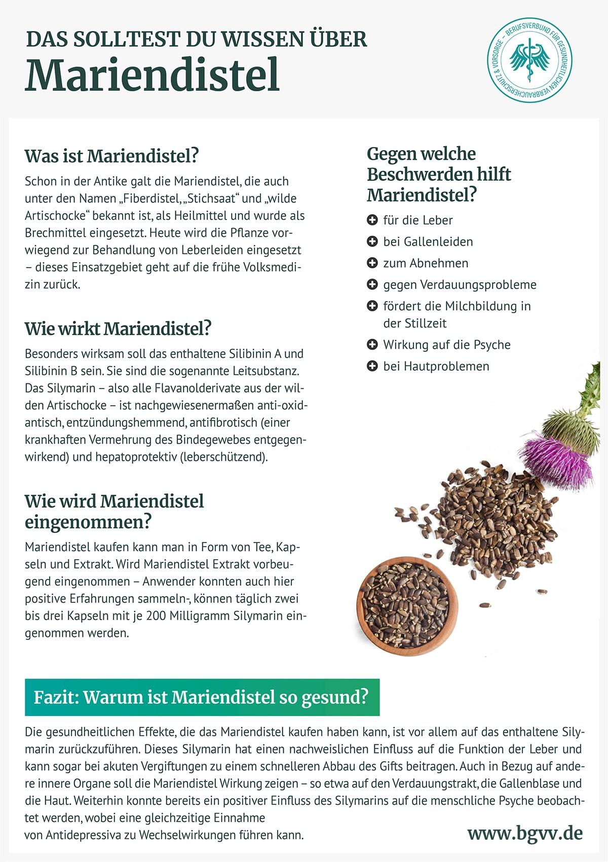 Infografik Mariendistel bgvv