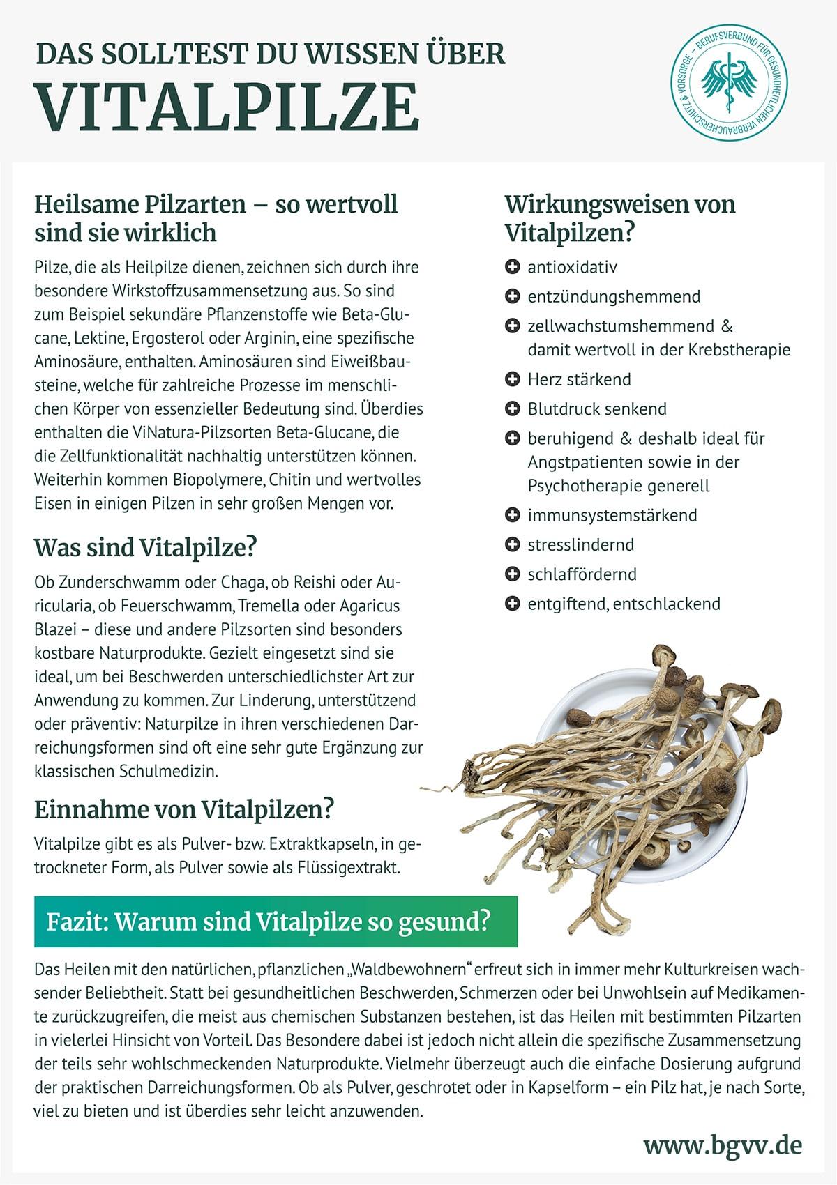 Infografik Vitalpilze BGVV