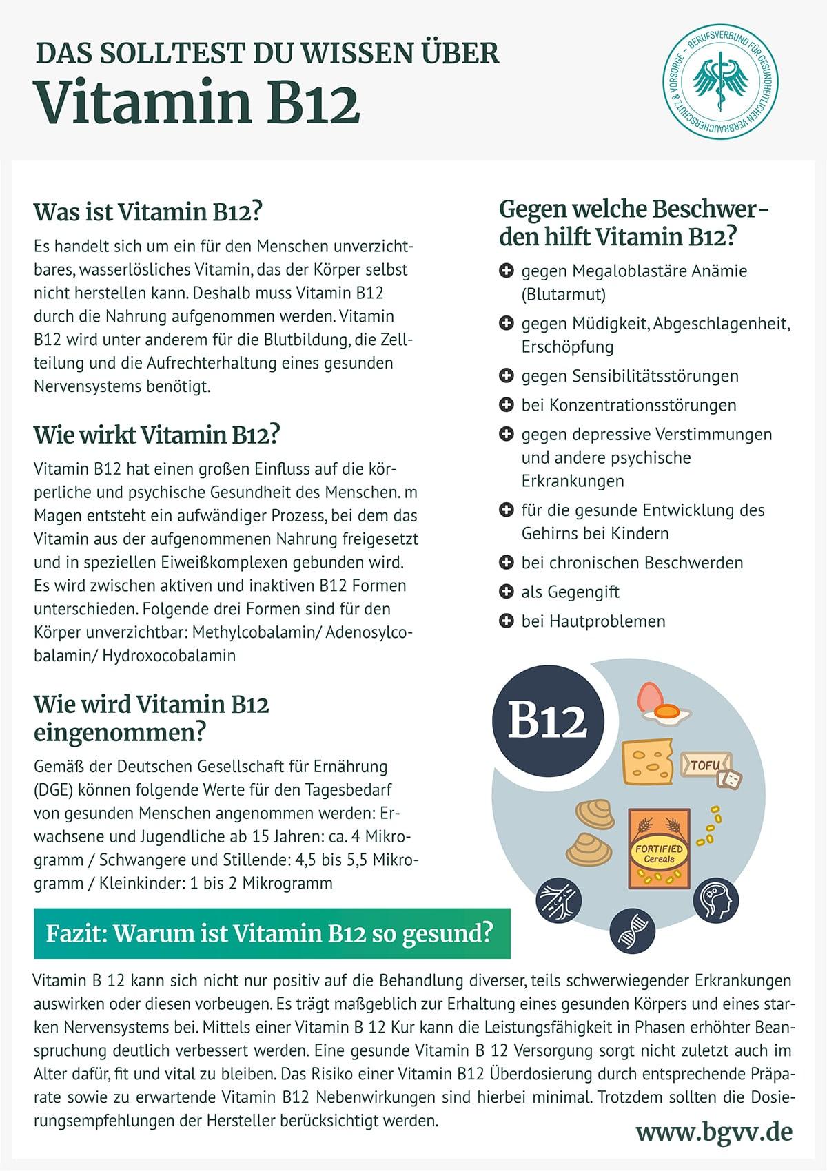 Infografik Vitamin B12 bgvv