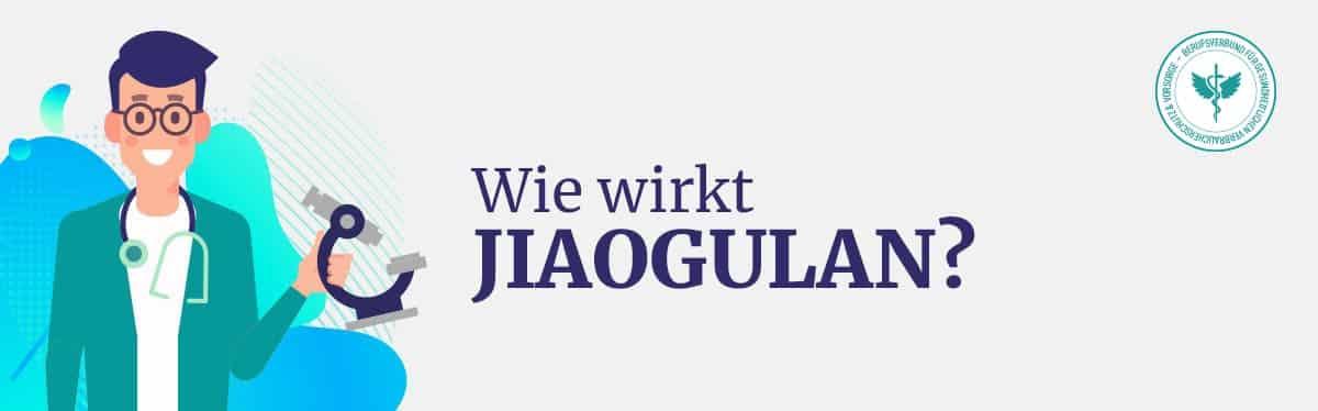 Wie wirkt Jiaogulan