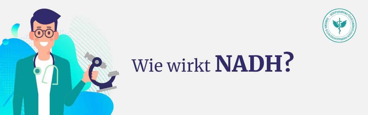 Wie wirkt NADH