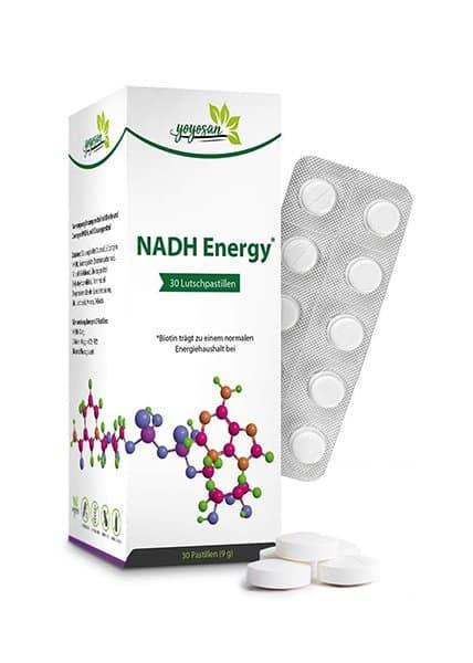 yoyosan NADH H+ Energy