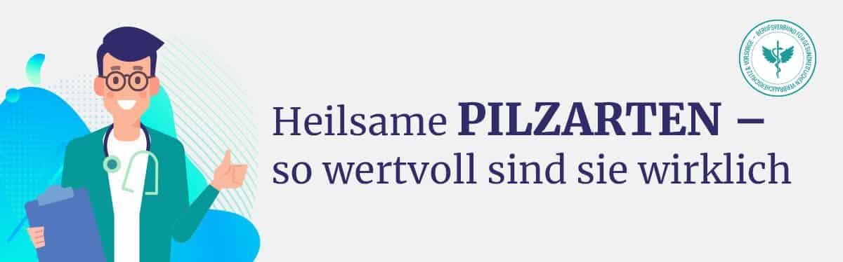 Heilsame Vitalpilze